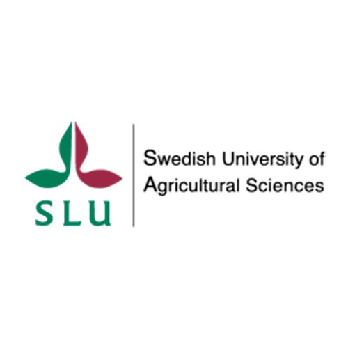 Swedish University